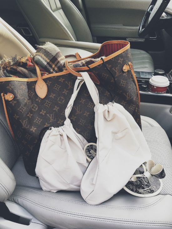 Shoe Bags for Daily Commute