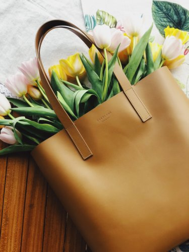 everlane the day tote
